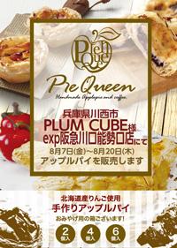 02_plumcubeexp