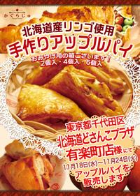 10_hokkaidodosankopuraza_yuuraku