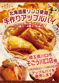 10_sogoukawaguchi
