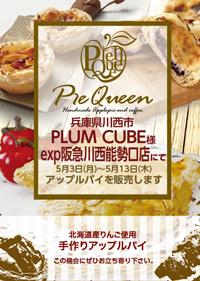04_plum_exp