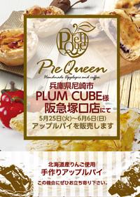 15_plum_hankyutsukaguchi